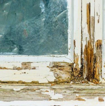 Sash Window Replacement Repair